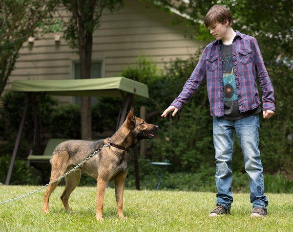 Josh Wiggins y Max