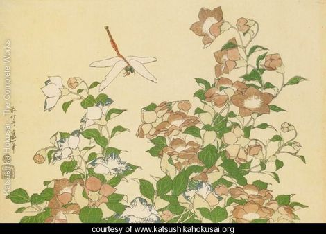 HOKUSAI. Bell Flower and Dragonfly